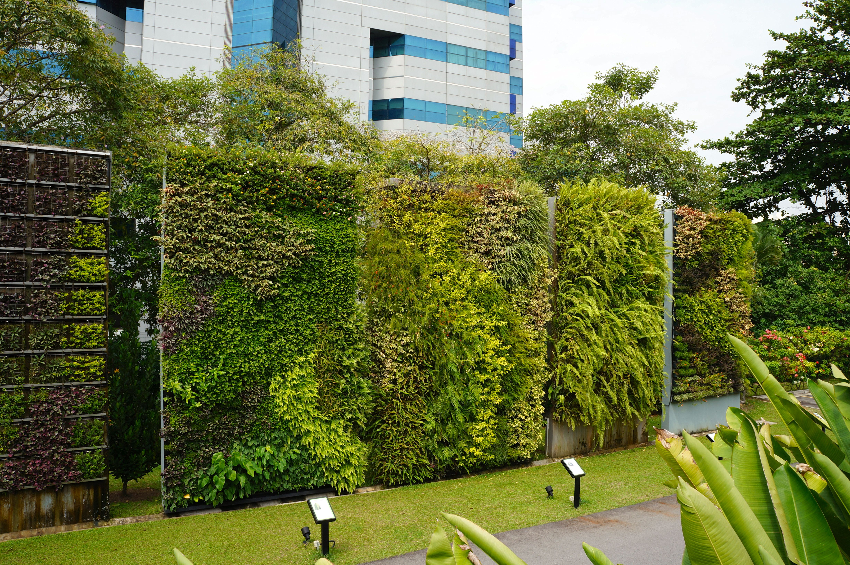 green walls singapore hortpark dikey bahçeler peyzaj on live wall id=24667