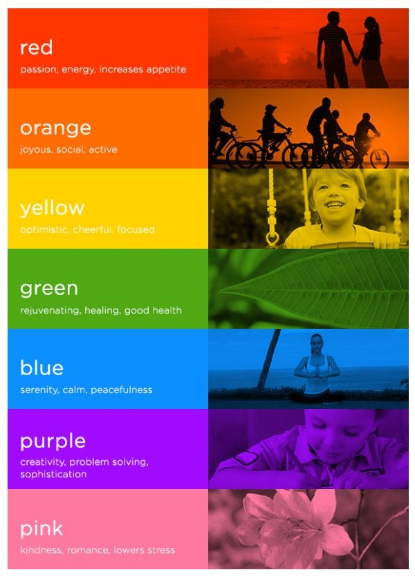 Colour Psychology Guide: 7 Colours and how they impact mood