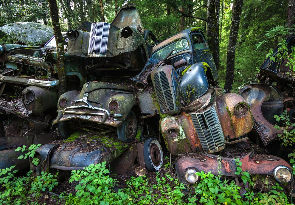 The rusting vehicles are all that remains of a scrap yard set up in ...