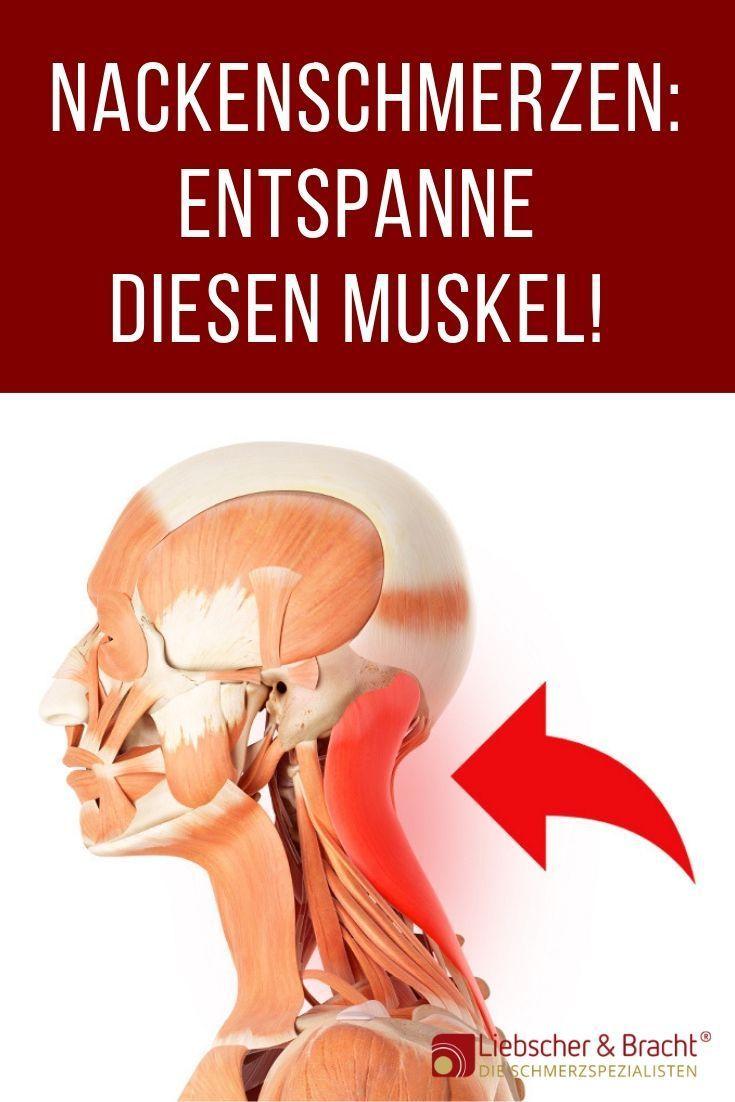 Nackenschmerzen Durch Diesen Muskel In 2020 Nackenschmerzen