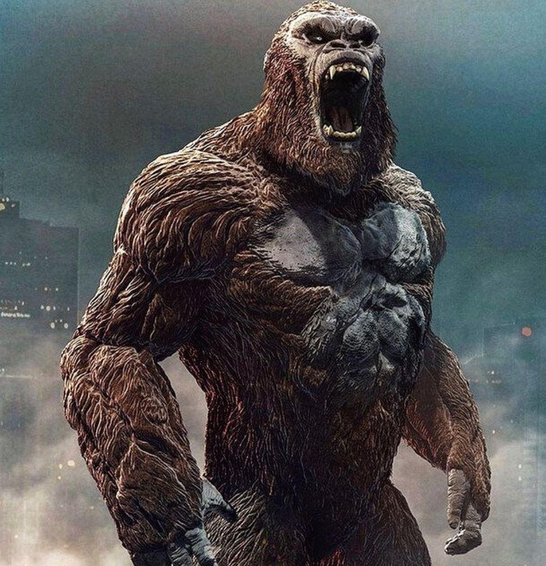 Godzilla Vs Kong 2020 Kong Fears No God Zilla Godzilla Movie News King Kong Vs Godzilla Kong Godzilla King Kong