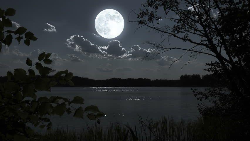 Full Moon Night Landscapes 30 Full Moon Night Landscape With Forest Lake 4k 00 30 Full Moon Night Night Landscape Moon Over Water Full Moon Night
