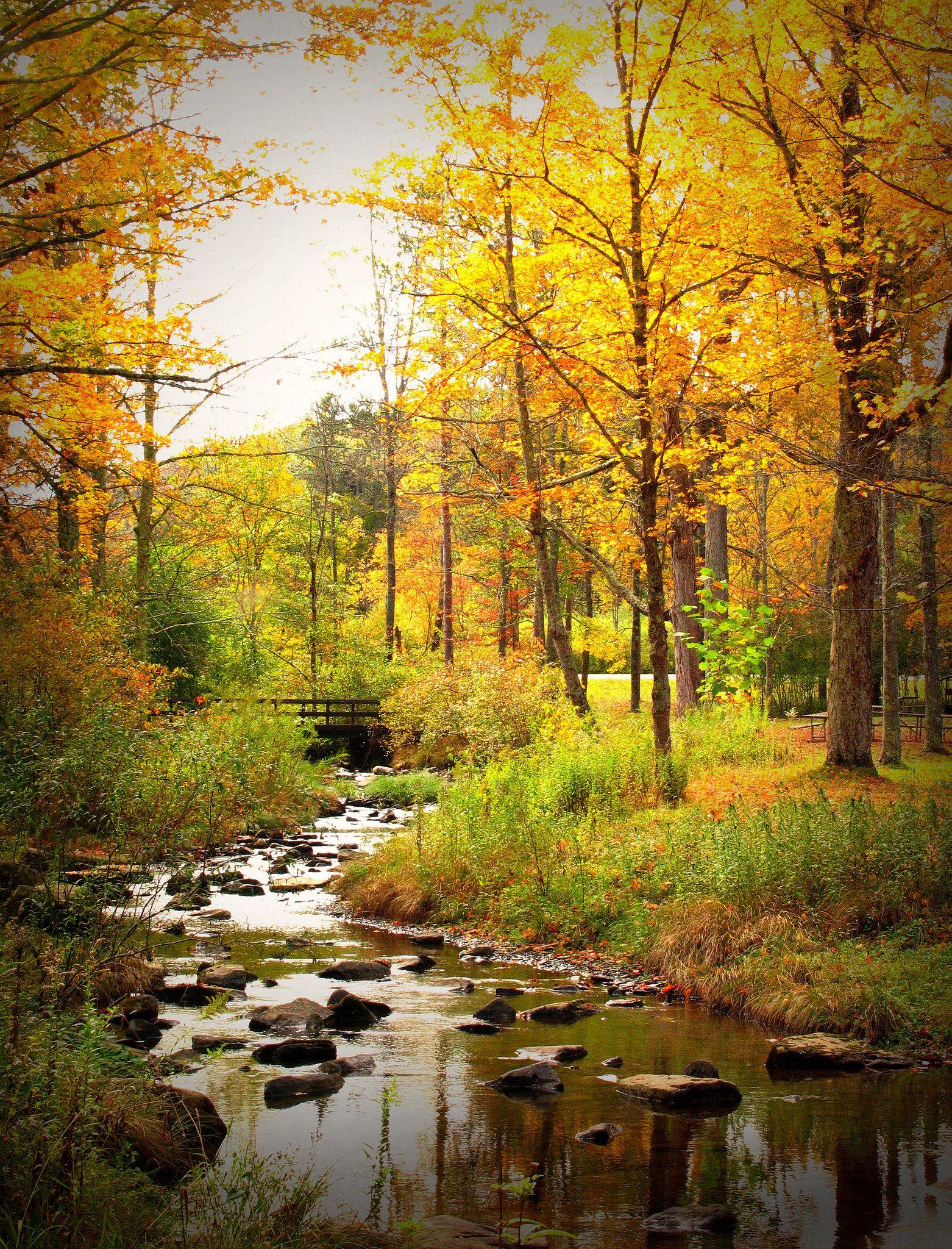 14 Rivers Amp Landscape Photos Ideas In 2021 Landscape Scenery