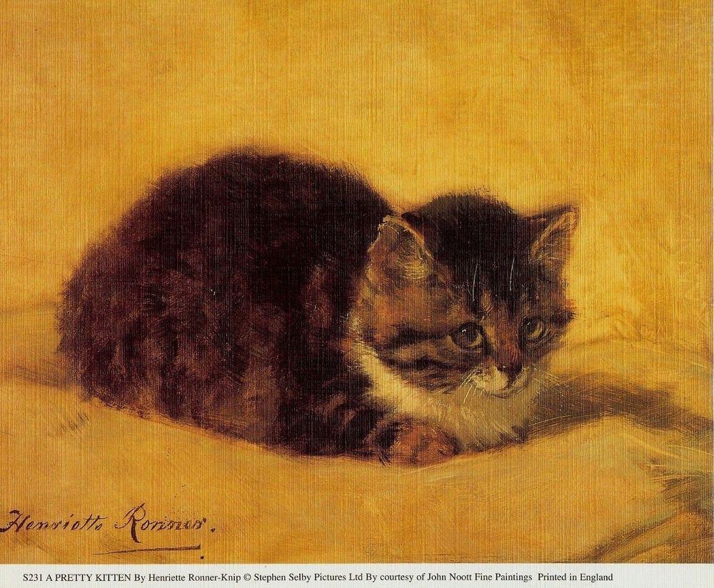 Vintage Cat Art A Pretty Kitten Art By Henriette Ronner Knip Canvas Kittens Realism Kitten Art Cat Art Vintage Cat