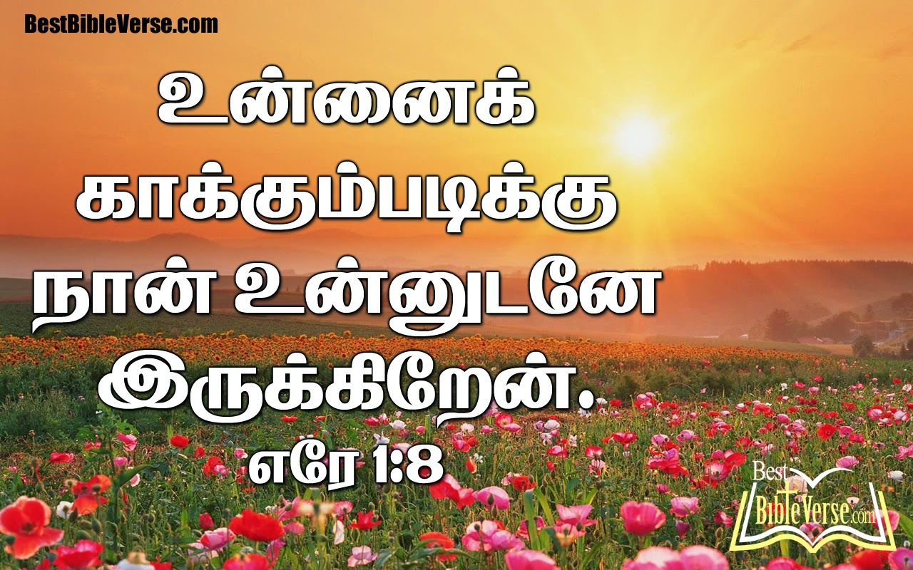 Latest New Tamil Jesus Bible Quotations Bestbibleversecom