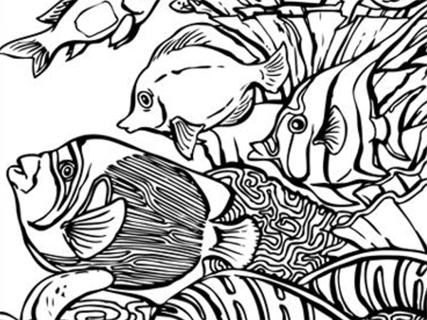 Great FREE sea life coloring pages.   coloring   Pinterest
