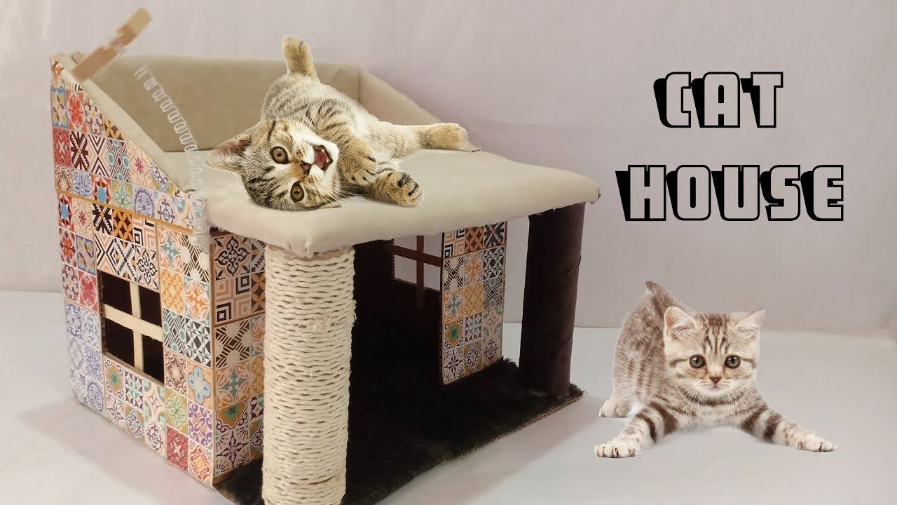 How To Make Amazing Kitten Cat Pet House From Cardboard Cat House Kitten House Youtube Cardboard Cat House Cat House Diy Cardboard Kitten House
