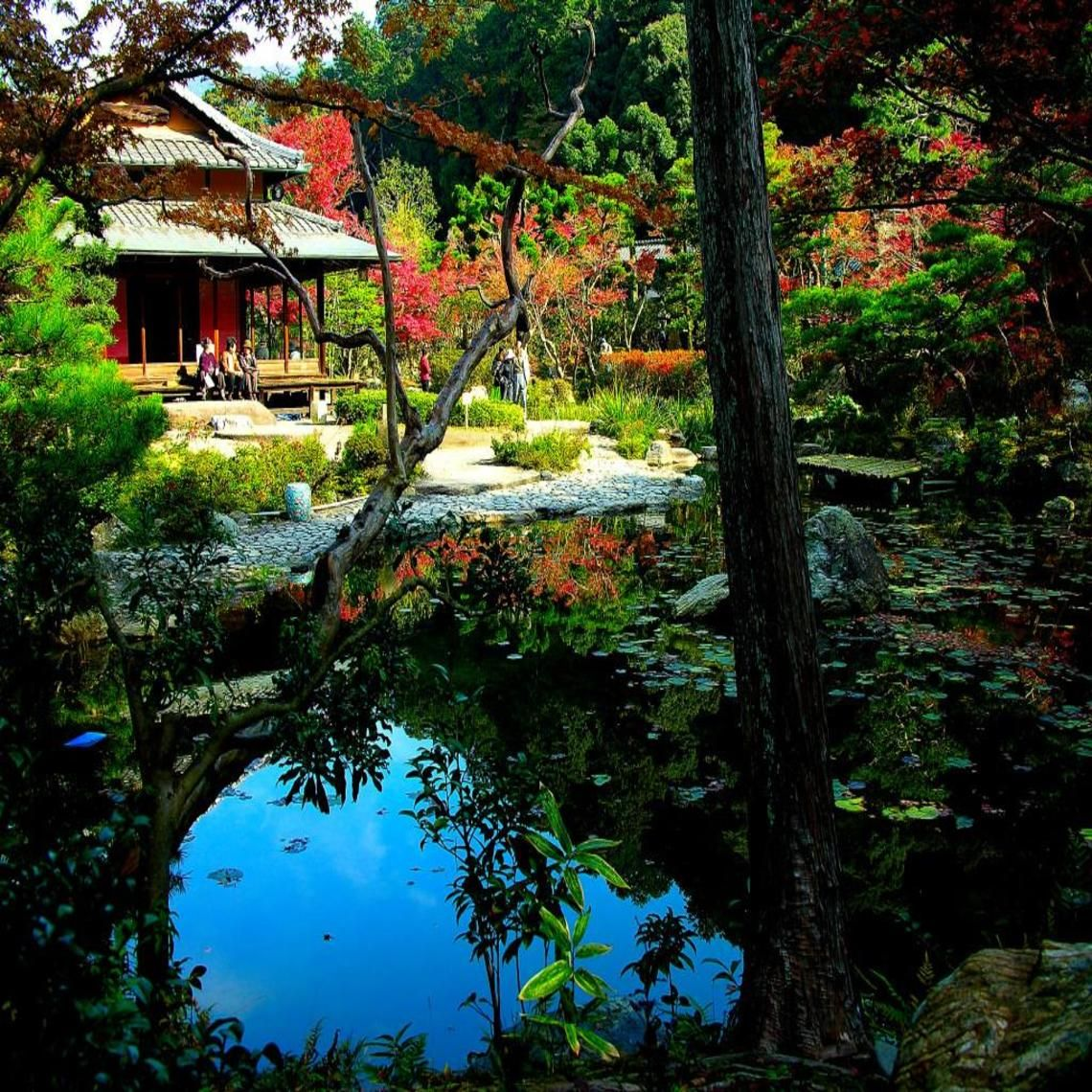 Japanese garden wallpaper pinterest rock