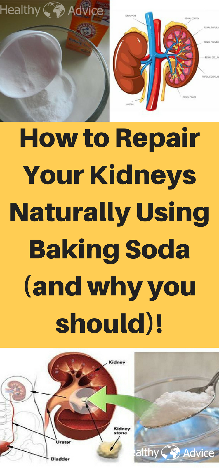 Repair Kidneys Cleanse Detox Kidney Feature Kidneys
