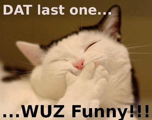 6b6618a52dd3f6c62138c23541fae73c funny meme laughing funny wallpaper pinterest meme and funny,Funny Laughing Meme
