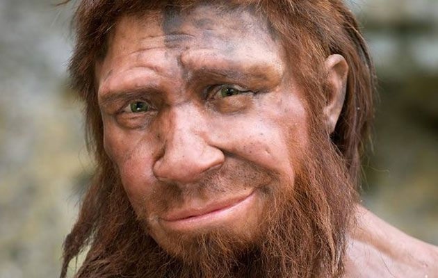 Reconstruction of a Neanderthal man by Alfons and Adrie Kennis at ...