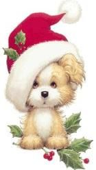 Cute Christmas Dog In Santa Cap Doggie Stuff 101 Pinterest