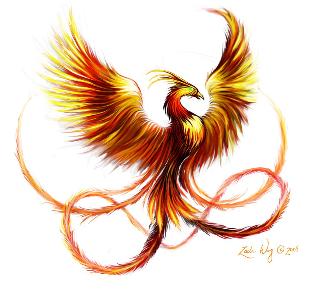 Colorful phoenix tattoo designs - I Love The Idea For A Phoenix Tattoo But Not Particularly This One Now That The Idea Is In My Head I Am Seriously Considering Getting A Tattoo