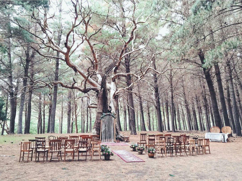 Burbrook forest wedding in kuitpo forest south australia styling burbrook forest wedding in kuitpo forest south australia styling setup by old refinery junglespirit Gallery