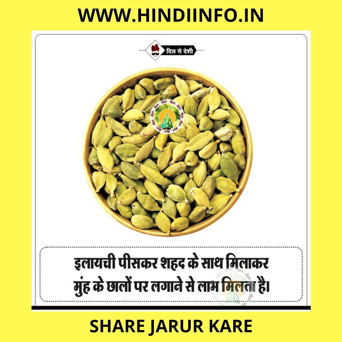 Hindi Education Website Health Tips Health Dog Food Recipes