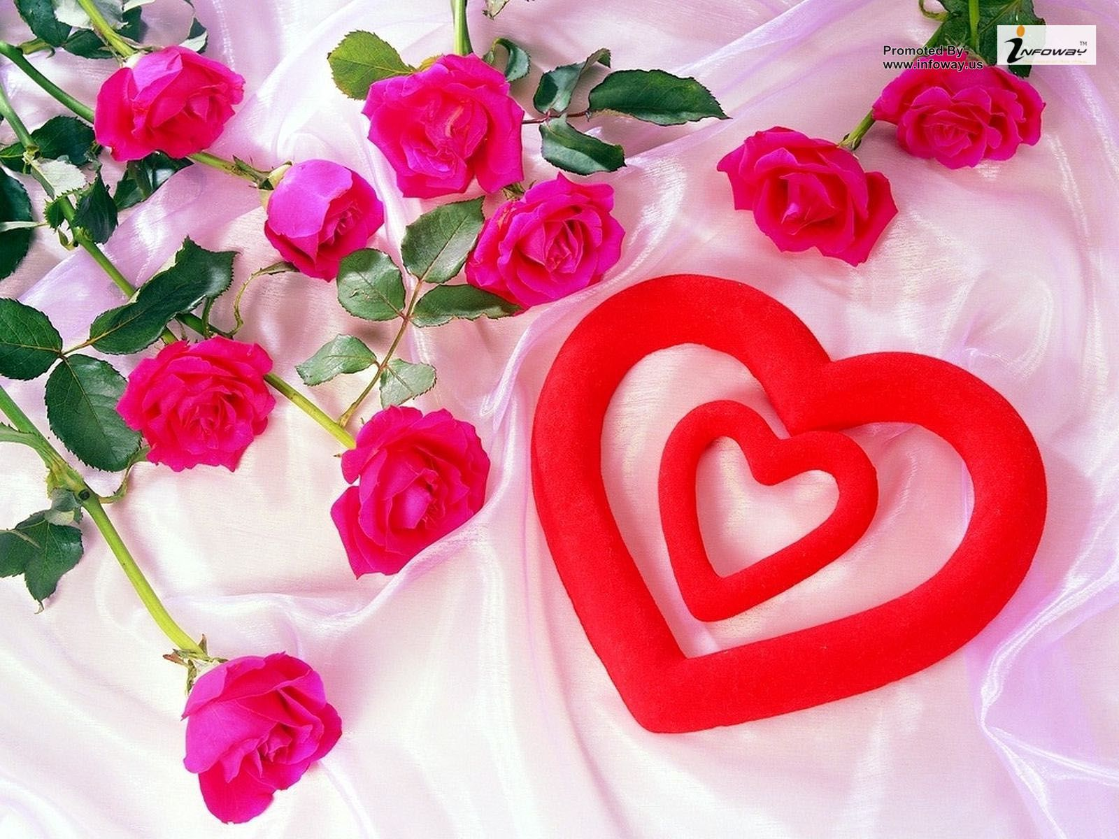 Wonderful Love Wallpaper For Any Query Email Sales Infoway Us Flower Images Wallpapers Love Flowers Hd Flower Wallpaper