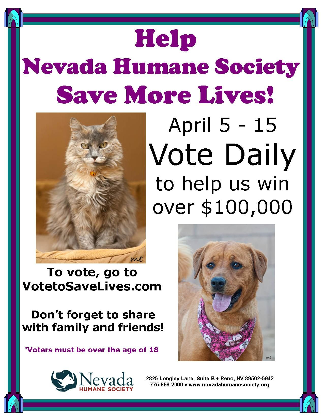 The Nevada Humane Society does amazing things in the animal rescue