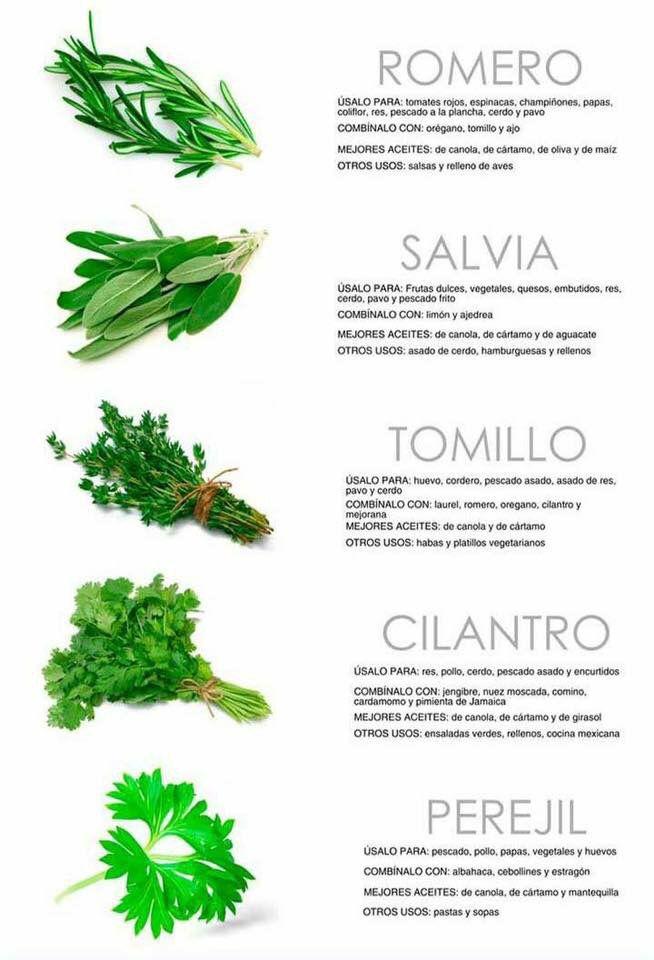 Guía para Cocinar con Hierbas II
