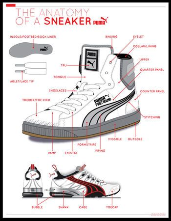 Anatomy of a sneaker