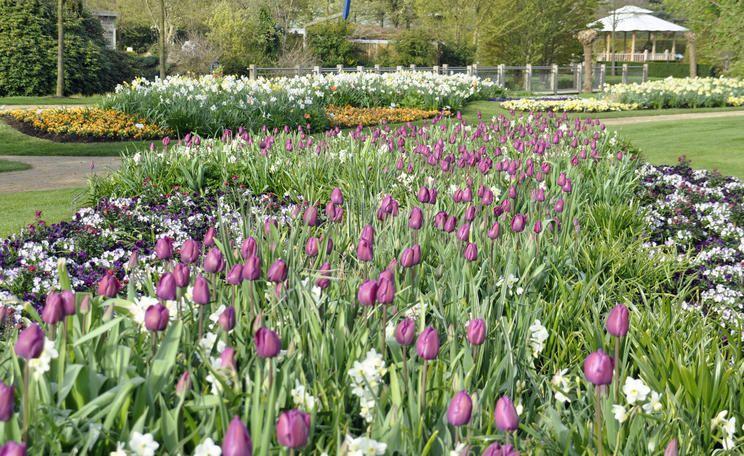 Park Der Garten Bad Zwischenahn Huhnerhaltung Im Garten Bepflanzung Garten