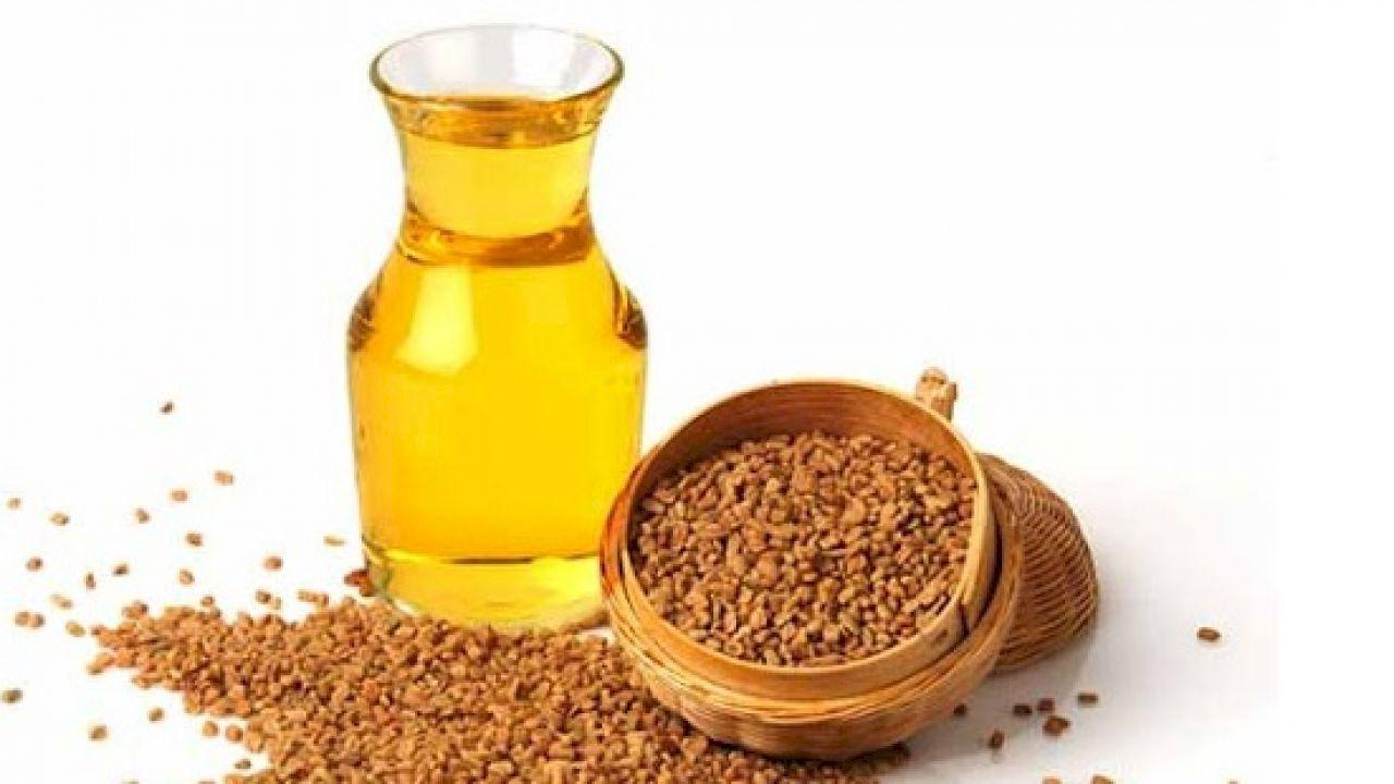 فوائد زيت الحلبة للأرداف Fenugreek Oil Fenugreek Benefits Fenugreek