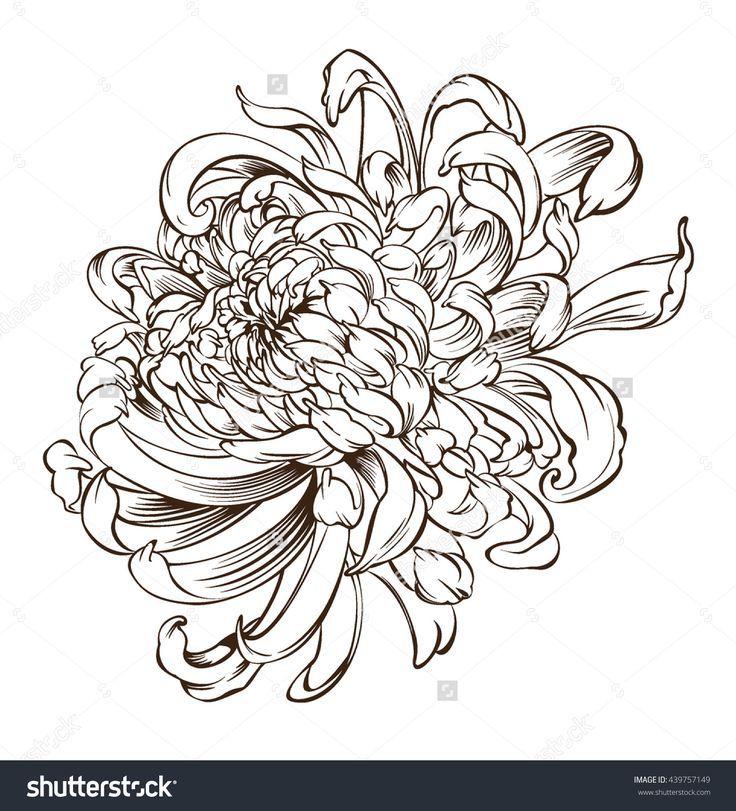 Image Result For Japanese Chrysanthemum Blue Black Ink Japanische Blumen Chrysantheme Tattoo Blumen Skizzen