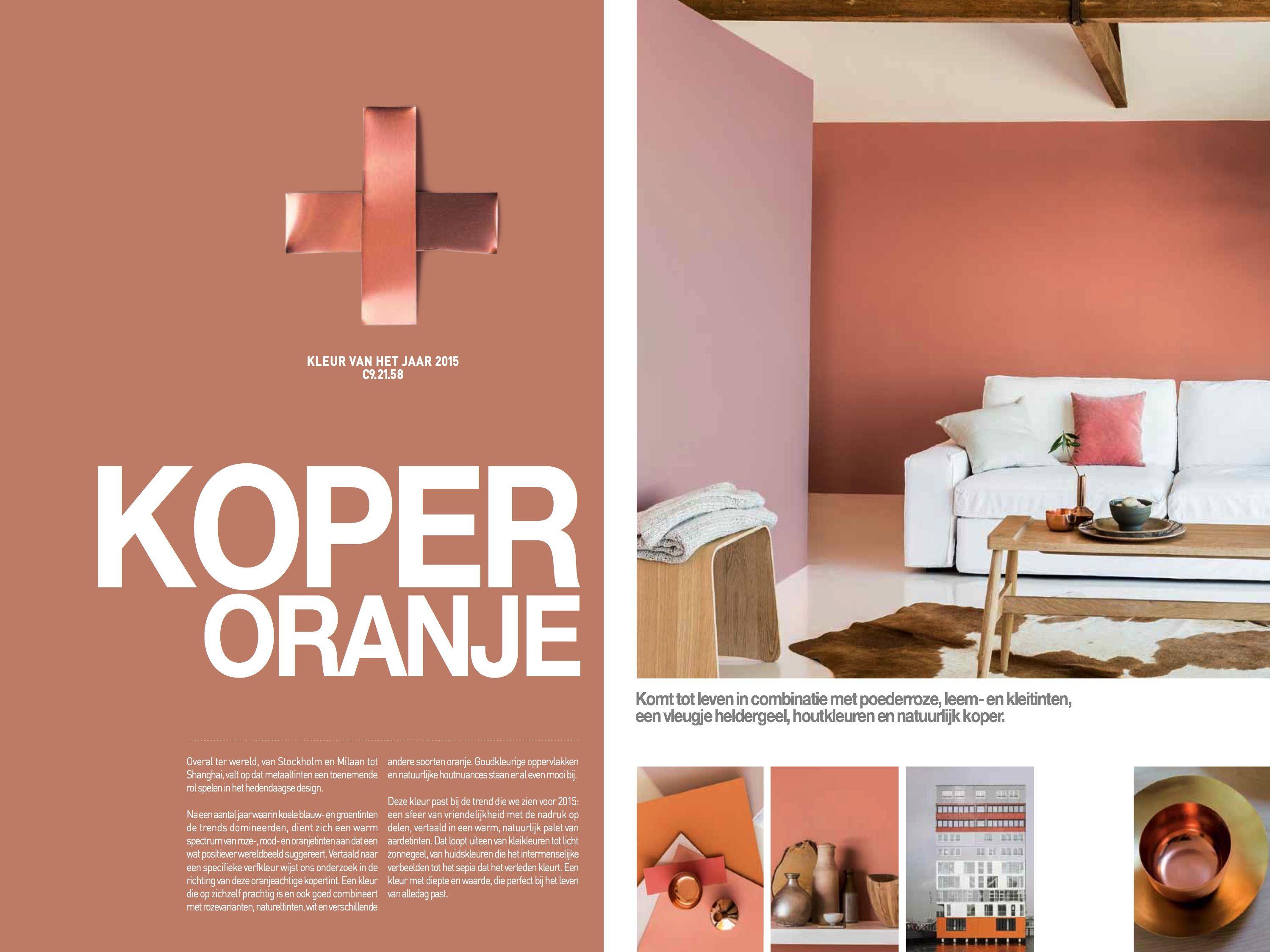 De trendkleur van 2015 is Koper Oranje Laat u inspireren