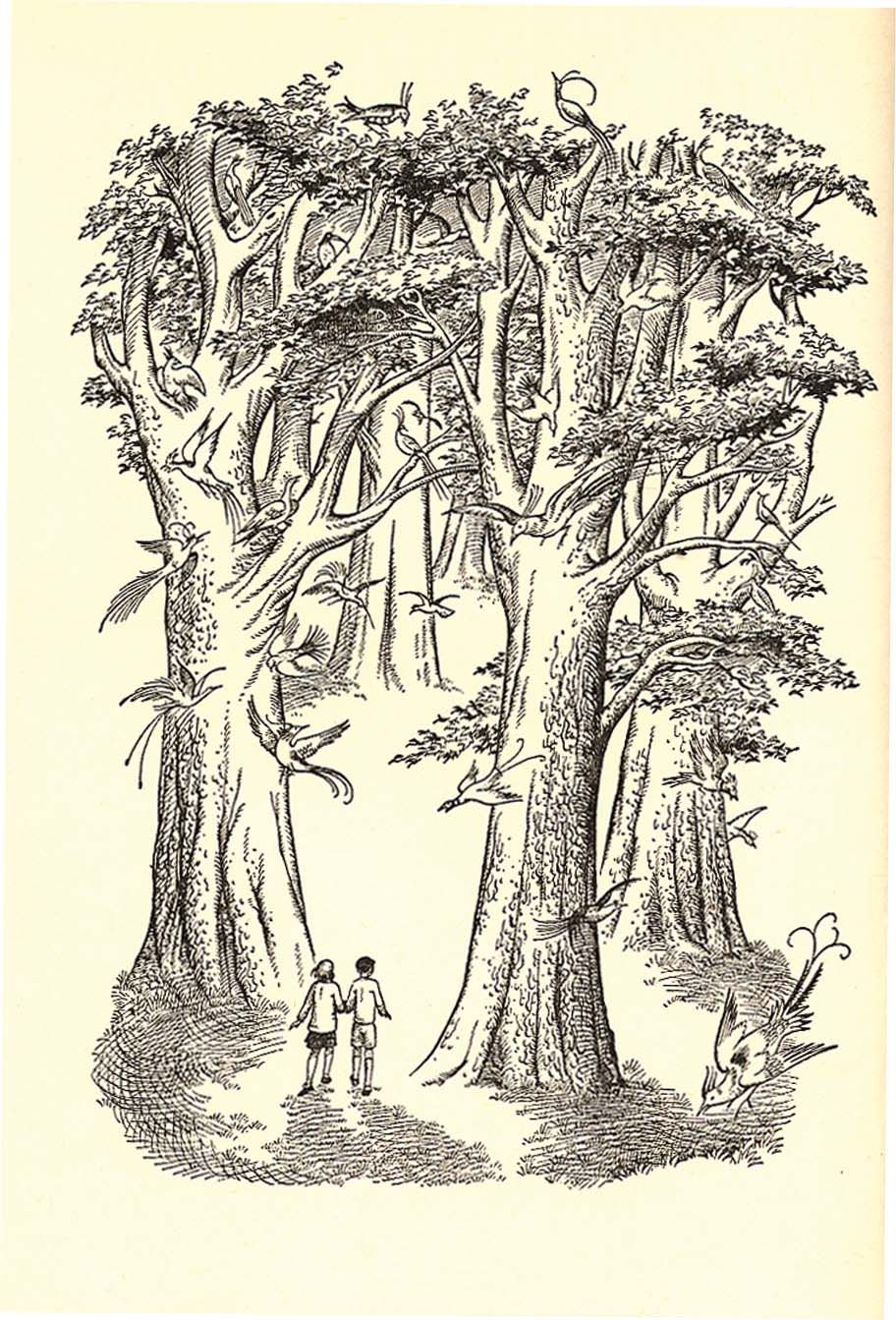 Illustration By Pauline Baynes From The Silver Chair Chronicles Of Narnia Chronicles Of Narnia Narnia The Silver Chair