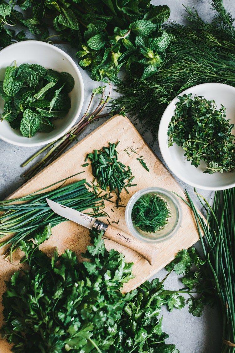 Back to basics storing fresh herbs food photography food