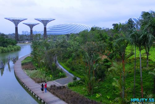 Gardens By The Bay East Singapore Blog Awards Finalist