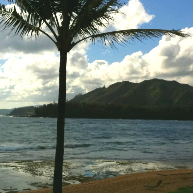 View from our lanai (patio).