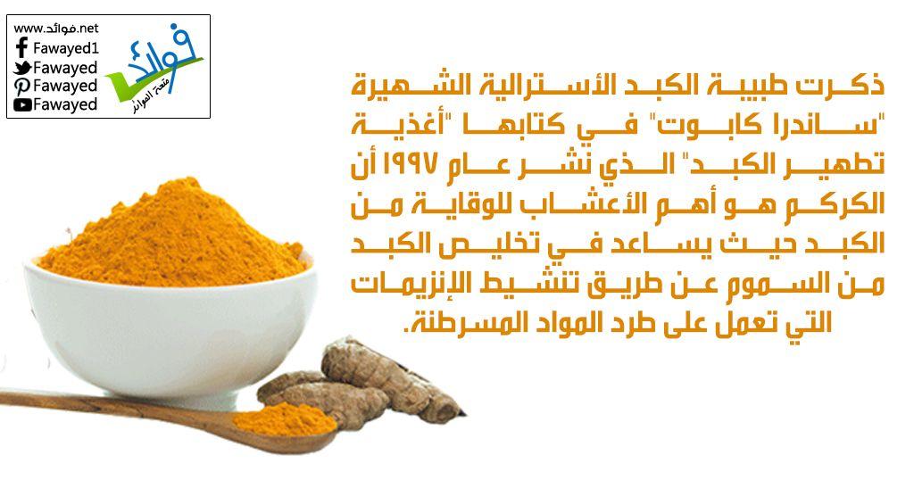 الكركم يساعد في تطهير الكبد Food Animals Dog Food Recipes Food