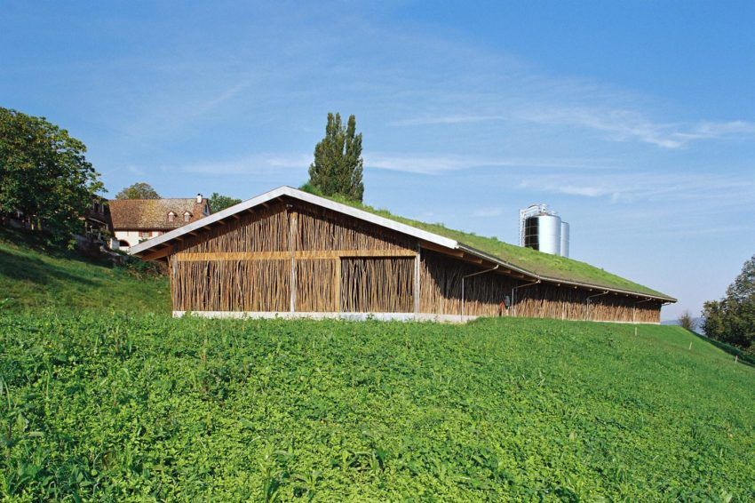 Rustic Cow Barn Located In Switzerland With A Total Area Of 2 000 Square Feet Traditional Sheds Rural Architecture Green Roof