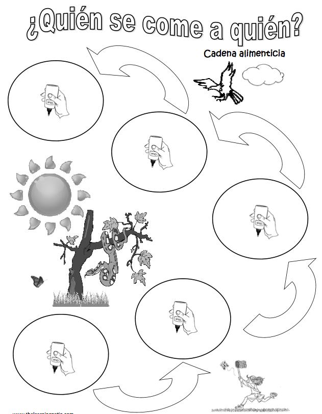 Cadena Alimenticia Ciencia Natural Ciencia Preescolar Y