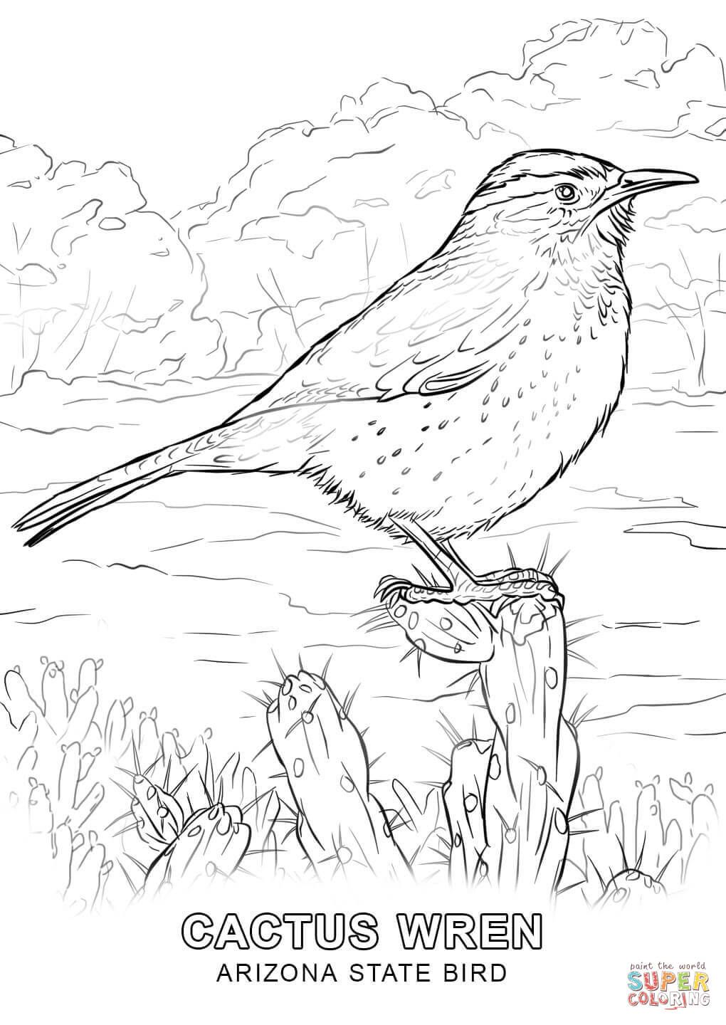 Arizona Coloring Sheets Bird Coloring Pages Coloring Pages