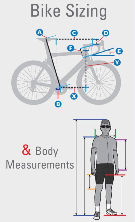 Road Bike Frame Sizes – Find & Fit The Right Bicycle for You | bike ...