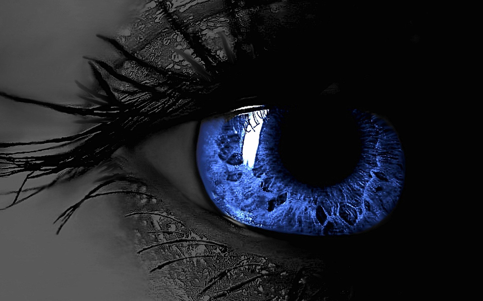 3d Blue Eyes Hd Wallpaper For Desktop Free Download Eyes Wallpaper Crazy Eyes Magic Eyes