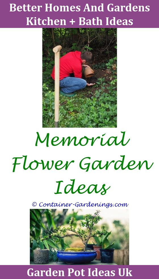 Gargen Garden Ideas For Concrete Trough Container Gardening Ideas ...