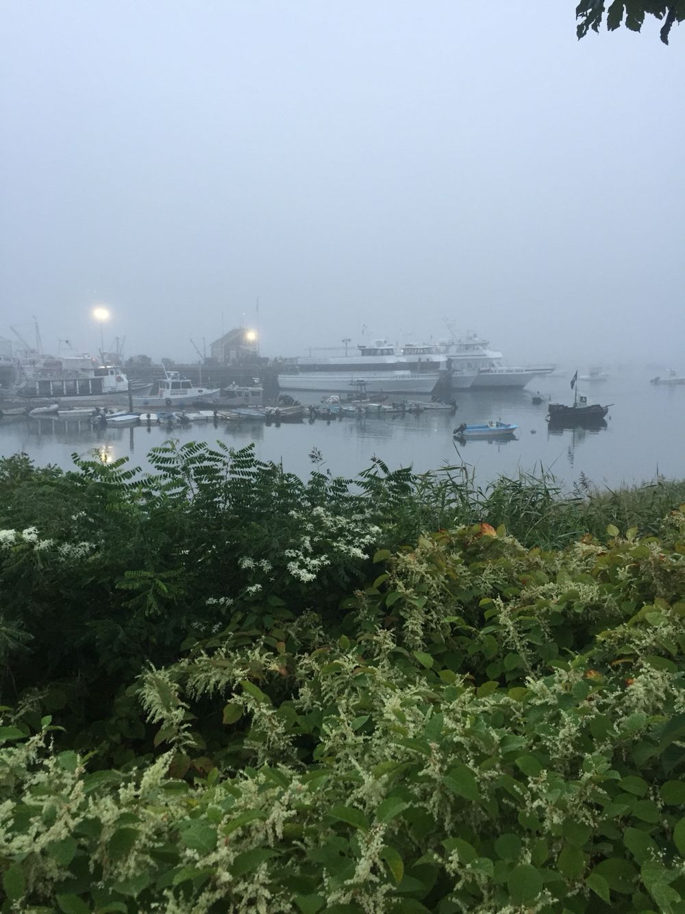 Plymouth Harbor morning
