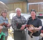 Smallholder courses, Smallholding Courses, beekeeping courses, sheep, hens, chickens, pigs - complete beginners - Mumbleys Farmhouse