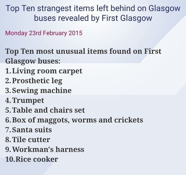And you never know what's lurking under your seat. | 23 Reasons Travelling In Scotland Is A Truly Batshit Experience