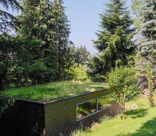 Begruntes Dach In Waldnahe Bauwerksbegrunung Dachbegrunung Wald Gras Begrunung Haas Ausfreudeamgrun Gartengestaltung Dachbegrunung Garage Dach Grundach