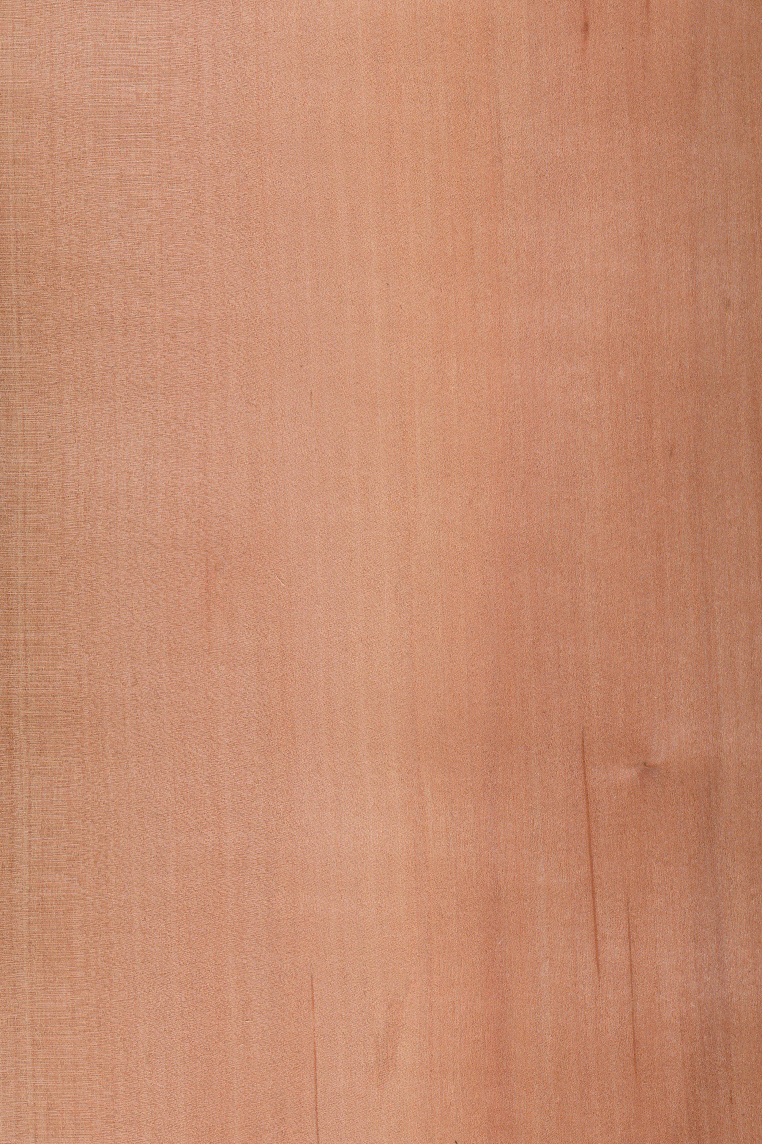 Holz Arten eslbeere furnier holzart elsbeere blatt dunkel braun