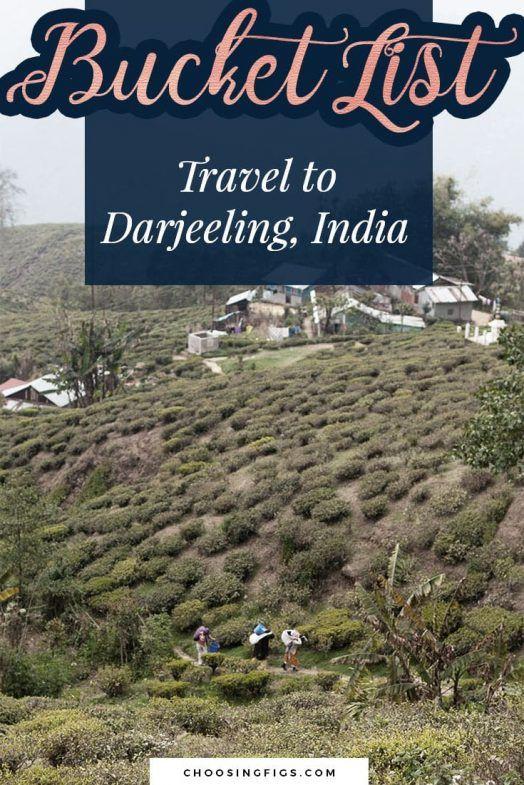 Darjeeling Unlimited Things to do in Darjeeling, India