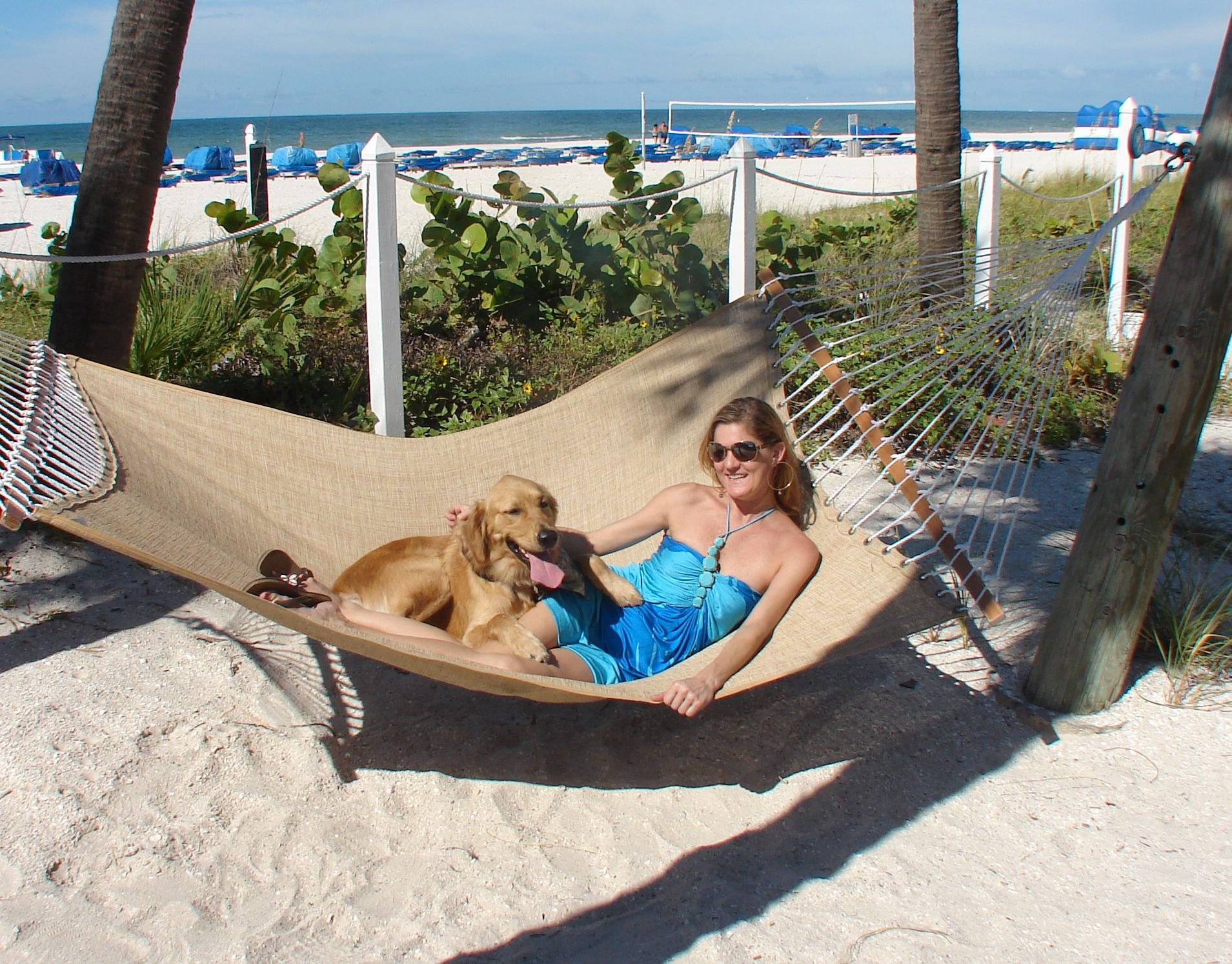 relax in a beachside hammock with enough room for two  relax in a beachside hammock with enough room for two    paws in      rh   pinterest