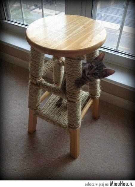 Jak Zrobić Drapak Dla Kota Flat Cat Scratcher Cat
