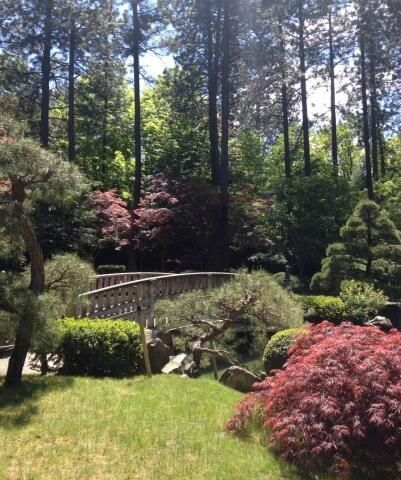 Take a leisurely stroll through the Nishinomiya Tsutakawa Japanese Garden in Spokane's Manito Park.