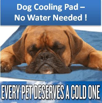 Dog Cooling Pads End Of Summer Sale Dog Pads Pet Pads Cool Pets
