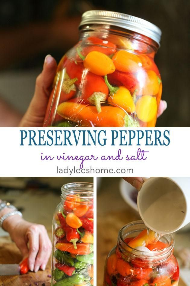 Preserving peppers in vinegar and salt Here is one way to preserve your garden peppers You can use this method with other vegetables as well Its super easy and fast