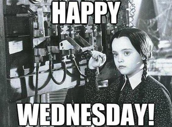 Wednesday Addams Meme Funny : Pin by amanda patterson on it's only wednesday pinterest